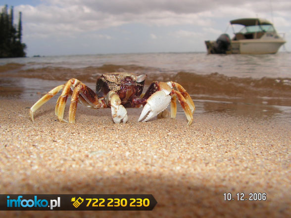 Najpiękniejsze wakacje tylko w Nowej Kaledonii