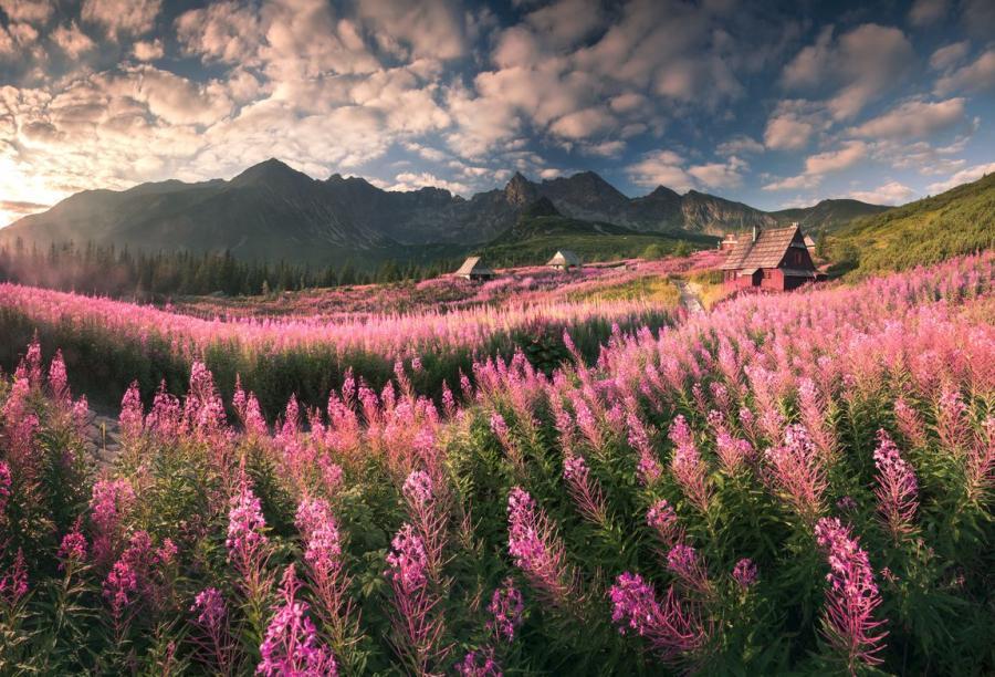 """Dolina Gąsienicowa / Fot. Karol Nienartowicz / """"Górskie wyprawy fotograficzne"""""""
