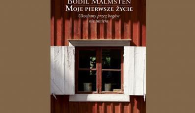 Urokliwie naiwna książka Bodil Malmsten