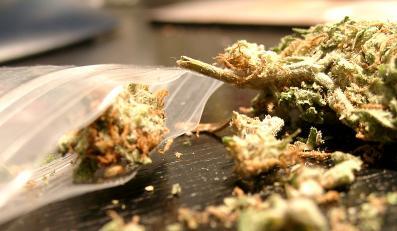 Paczuszki z marihuaną w specjalnych automatach