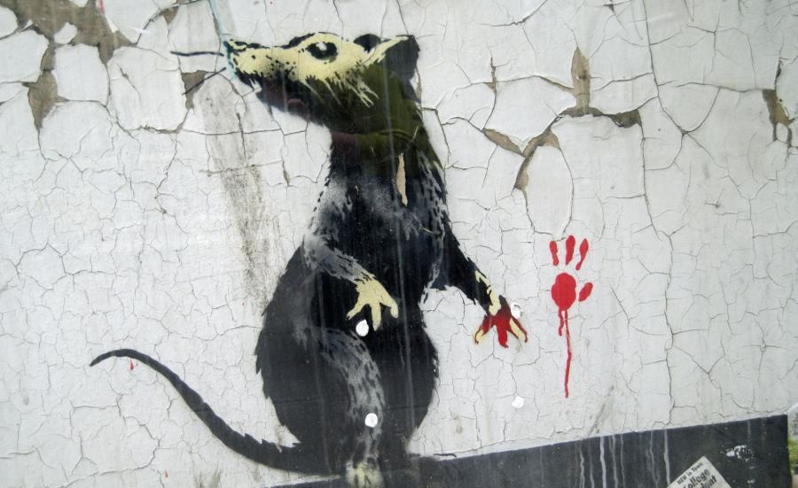 Szczur z Londynu. Jedno z dzieł Banksy\'ego