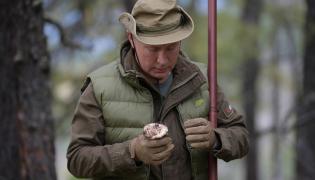 Władimir Putin zbiera grzyby