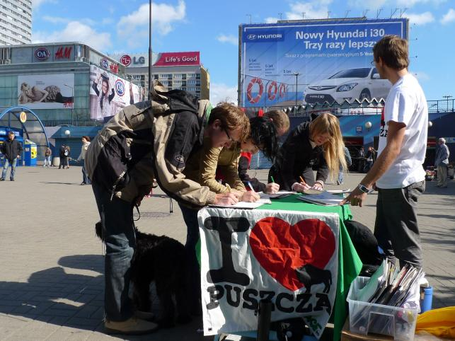 100 tysięcy podpisów pomoże ochronić Puszczę Białowieską