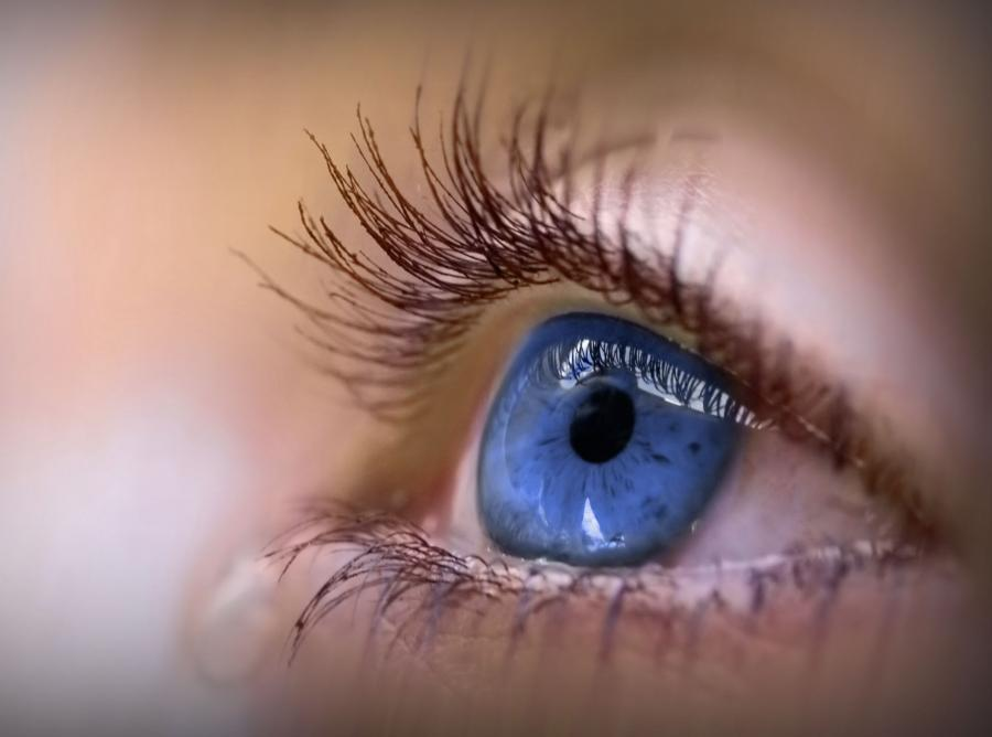 Pierwsza siatkówka z probówki - nadzieja dla niewidomych