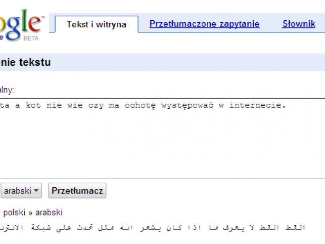 Google Translate już z językiem polskim