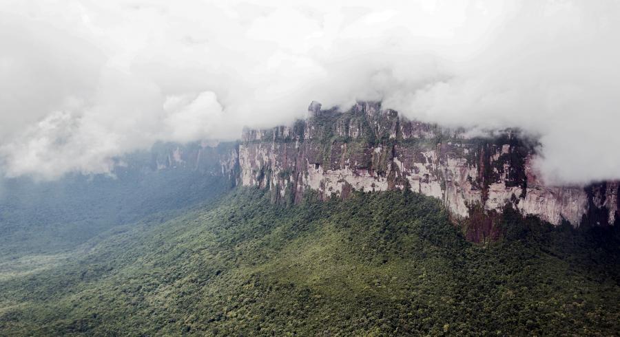 Lasy tropikalne w Wenezueli