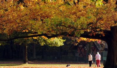 Jesień w Europie - Niemcy