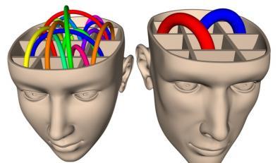Mózg kobiety i mężczyzny