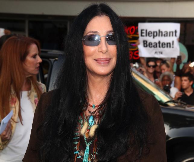 Cher zapowiada wielki comeback