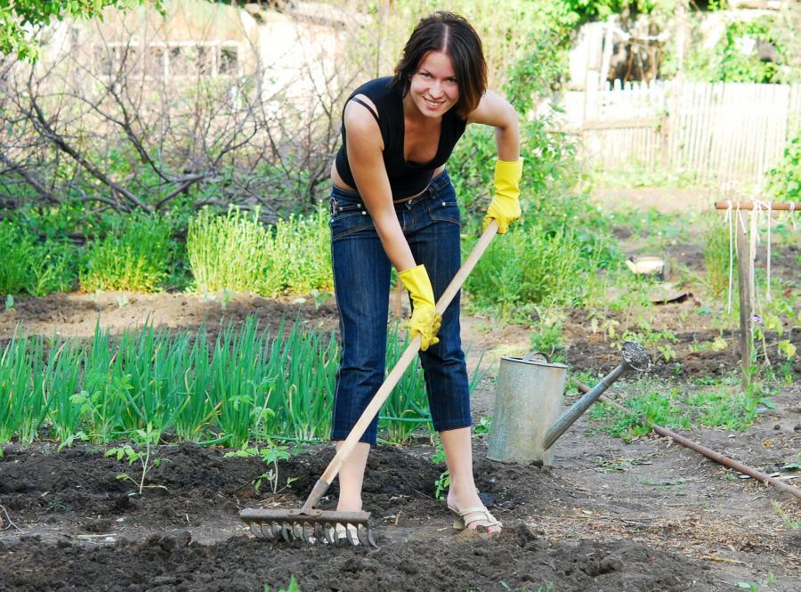 Kobieta pracuje w ogródku