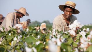 """""""Zniewolony. 12 Years a Slave"""" –  najczęściej nagradzany film ostatnich miesięcy"""