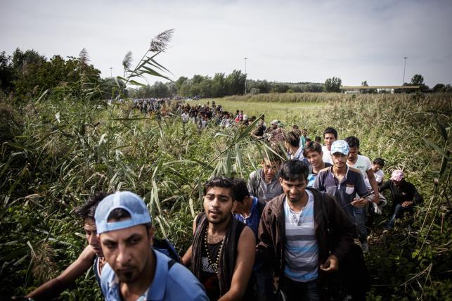"""Zdjęcie z fotreportażu """"Granica"""" autorstwa Macieja Moskwy"""