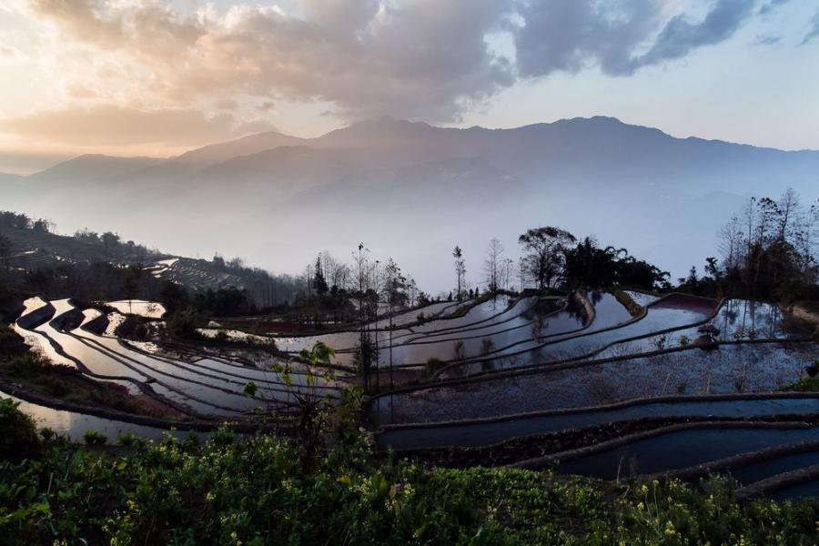"Tarasy ryżowe Yuanyang, Chiny; fot. T. Bogusz / ""Pirania na kolację"""
